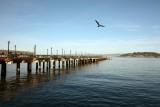 Water Front Pier
