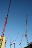 The dance of cranes