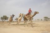 The Bedouin in Israel