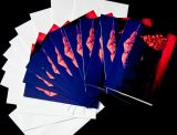 Shasta Christmas Tree Cards