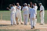 cricket12