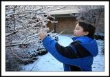 jan 16 icy