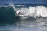 surfers__dolphins