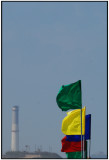 electric flags