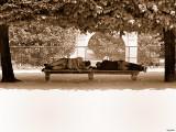 Paris Tuileries 060714 004 800.jpg