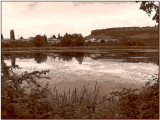 The Marsh in Sepia