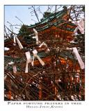 prayer papers in tree, Heian Jingu