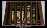 Conversation, Sanzen-in Temple