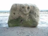Random face on a rock in Las Grutas