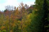 fall072.jpg