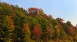 fall075.jpg
