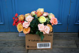 Provence Bar & Restaurant at Prince Street - Fresh Flower Delivery