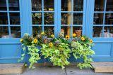 Provence Bar & Restaurant at Prince Street