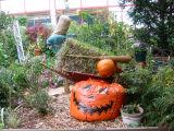 Halloween & Harvest Garden Plot