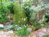 Garden Path Intersection