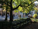 Washington Square South View