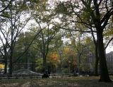 Park View - NYU Law School Vanderbilt Hall