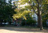 Washington Square East View