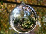 Silver Gazing Ball in an Apple Tree - Garden Reflection