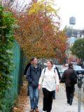 LaGuardia Place Sidewalk with Apple Tree Foliage