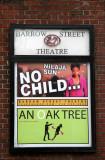 Barrow Street Theatre Poster