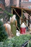 Nativity Scene at St Anthony's Church