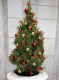 Holiday Tree at 1 Fifth Avenue  Entrance