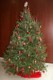 Christmas Tree - NYU Residence Lobby