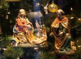 Christmas Tree Nativity Scene - Matt McGhee Store Window
