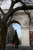 Scholar Tree, Arch, Christmas Tree & Empire State Building