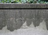 Wet Garden Wall