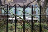 Garden & West Houston Street View