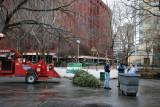 Mulching Equipment & Staff