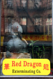 Red Dragon Exterminating Company Store Window