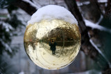 Golden Gazing Ball