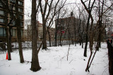 Winter - LaGuardia Place Time Landscape Garden