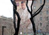 GAP Billboard Framed by Two Locust Trees