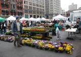 Flower Market View
