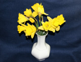 Daffodils in a White Vase