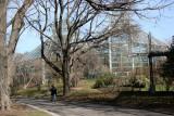Galleries - Brooklyn Botanic Gardens