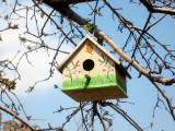 Manhattan Bird House
