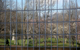 Park Reflection in Museum Windows