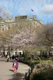 NYU Main Building at WSE