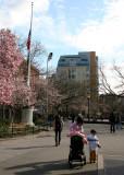 NYU Student Center - Half Mast Flag in Memory of Virginia Tech Tragedy