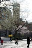 Judson Church Bell Tower & NYU Law School