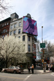 Intersection at Broome Street