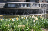 Fountain and Garden Area