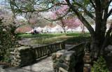Stone Bridge to the Japanese Pond Garden