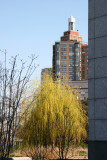 Willow Tree by Jewish Holocaust Memorial Museum