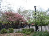 Tompkin's Park Entrance at 8th Street